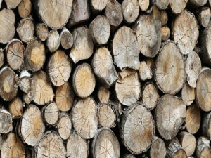 واردات چوب بریوزا